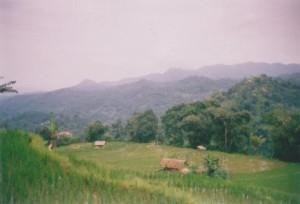 Curug Sanghyang Taraje-garut