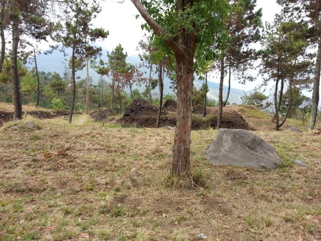 Nangklak Gunung Papandayan (12)