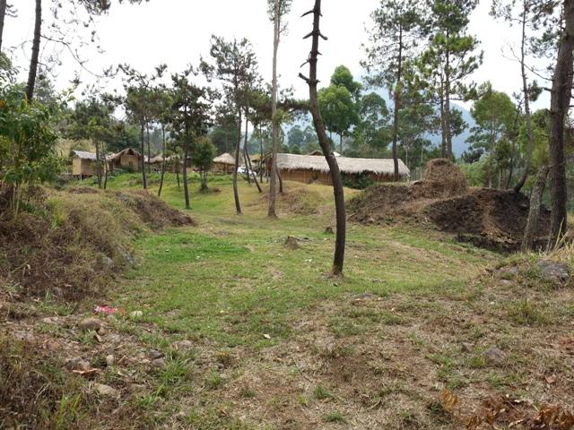 Nangklak Gunung Papandayan (2)