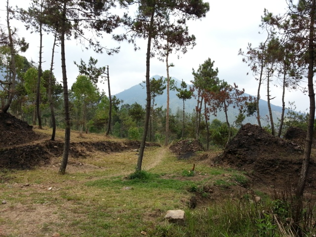 Nangklak Gunung Papandayan (3)