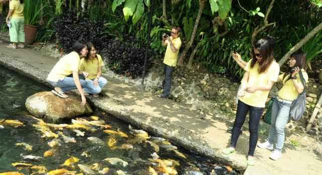 foto kampung sampireun garut (7)