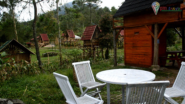 Pcg Papandayan Camping Ground Garut Info Dan Harga